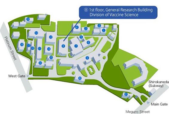 ワクチン科学分野場所 交通map